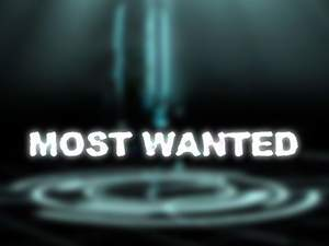 video most wanted